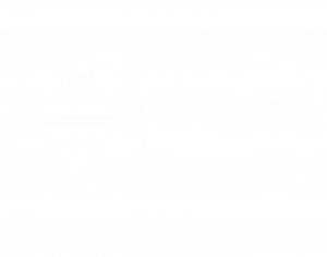 BSI_ISO_9001-only-1-1-300x236